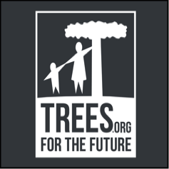 trees for the future | pacific shoji works